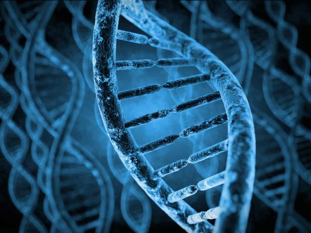 L'arthrose lombaire a également des origines génétiques